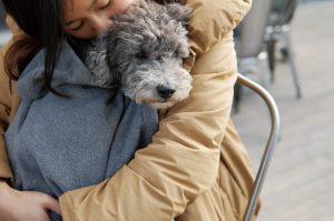 愛犬も飼い主もあったかいスリングブランケット