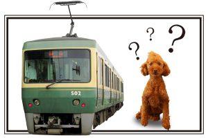電車に犬を乗せれるの?