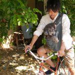 自転車で愛犬と[並走]すると、懲役又は5万円以下の罰金!?