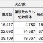 犬殺処分0に貢献したい 第一回|犬ってみんな幸せじゃないの!?殺処分?遺棄?日本の犬の世界は黒すぎた。