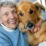 【追記あり】高齢者の健康のために犬との暮らしをすすめることの違和感について