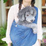 犬用抱っこ紐、スリングタイプ