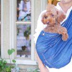 12/3(日)名古屋はわんだらけにて出店!試着&即売会を実施、愛犬と好きな色を選んでください