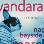 3/12(日)名古屋わんだらけにて試着&即売会をします♪120店舗が出店予定!