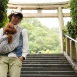 5/28(日)神戸わんわんマルシェで試着&即売会をします!新色販売します。