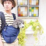 6/18(日)名古屋「わんだらけ」で試着&即売会をします!夏用メッシュスリングも販売します