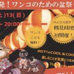 8/13(日)大阪「盆ドッグ」で試着&即売会をします!夏用メッシュスリングもあります
