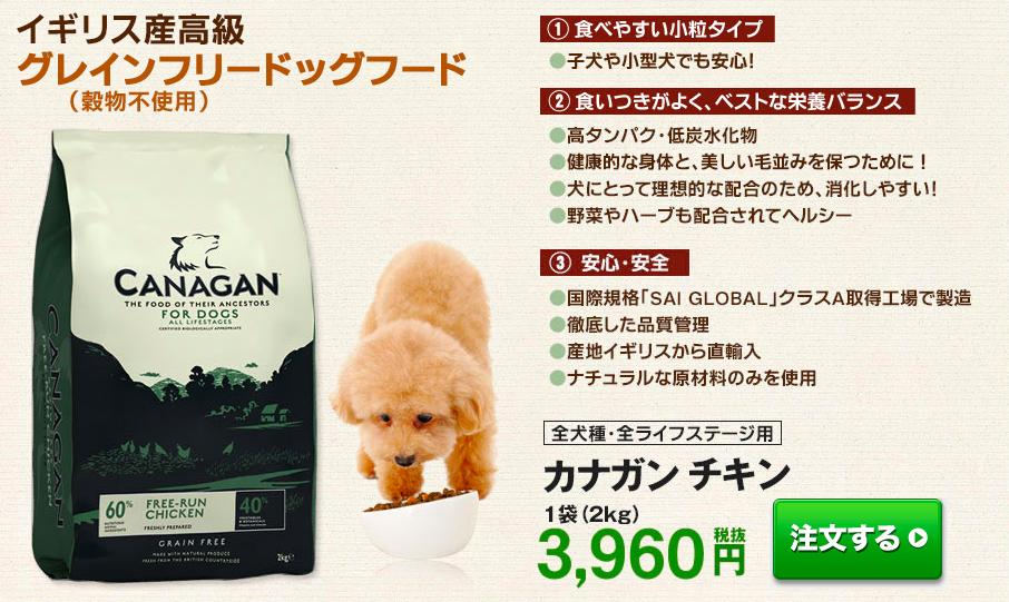 柴犬 モグワン カナガン
