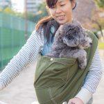 6/17(日)名古屋はわんだらけにて試着&即売会します!お好きなデザインを愛犬と試してみてください
