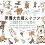 [シェアお願い] 保護犬LINEスタンプできました!売上金は保護団体に全額寄付します。