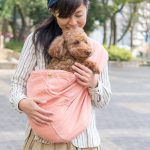 11/3(土)4(日)神奈川県「HUG ANIMALS」にて試着&即売会をします!全サイズ愛犬とお試しいただけます。