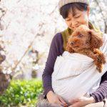 13日(土)14日(日)代々木公園「わんわんカーニバル」にて試着&即売会をします!お好きなデザイン&サイズを愛犬とお試しください。