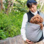 27日(土)28日(日)大阪鶴見緑地「パートナードッグカーニバル」にて試着&即売会を実施!愛犬と一緒にサイズをお試しいただけます