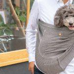 5日(日) 大阪はべんてん広場にて試着&即売会を実施!愛犬と一緒に試着できます