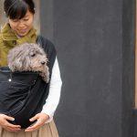 28日(土)愛知県安城市「犬の運動会&マルシェ」にて試着&即売会します!